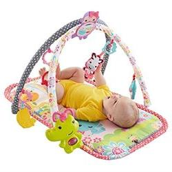 Fisher-Price 3-in-1 Musical Activity Gym, Pink