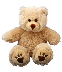 personal recordable plush talking teddy